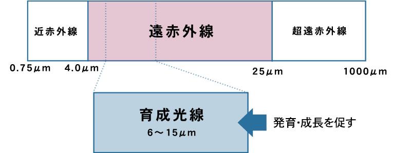 ホリスティックキュアドライヤーRp.(CCID-G04B) ヘアレシピ