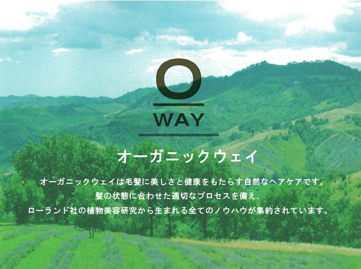 O-WAYとは